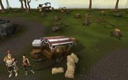 Clan Camp