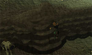 Wilderness agility course(rock climbing)