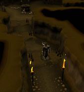 Flat stone trap 1