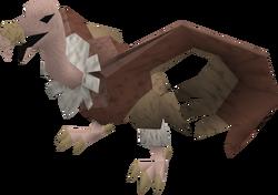 Vulture (brown ruff) pet