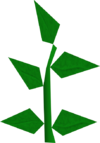Equa leaves detail