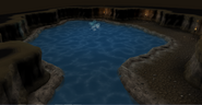 Pool inside cave in Land of Holly and Hawthorn before using Water key
