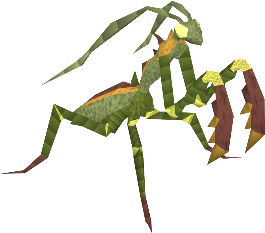 how to catch a praying mantis