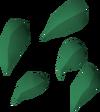 Ugune seed detail