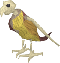 Ex-ex-parrot pet