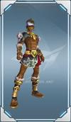 P6-2 AmazonWarrior (U)