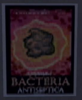 File:Stilwater Science Center bacteria poster.jpg