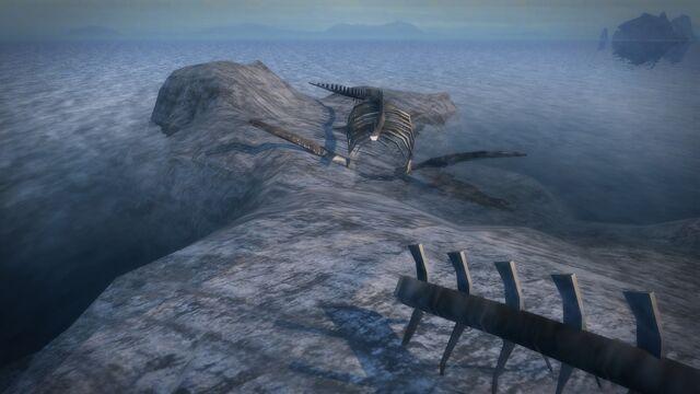 File:Bone Island - rear section of the skeleton.jpg