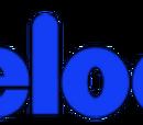 Vickelodeon (canal de televisão)