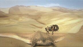 Giant sand ray
