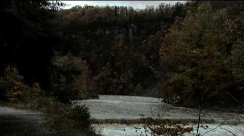 Living Downstream - Trailer