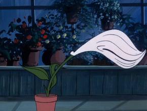 Flytrap lily