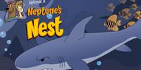 Neptune's Nest (level)