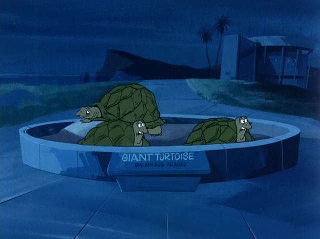 File:Giant turtoises (Scooby's Night With A Frozen Fright).png