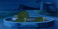 Giant turtoises (Scooby's Night with a Frozen Fright)