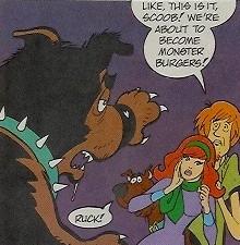 Maltese Mutt Monster 1st approaches