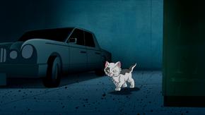 Kitten (Homeward Hound)