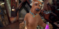 Scooby Brainiac