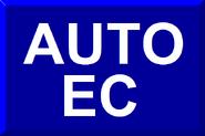 Bandeirinha Auto Esporte