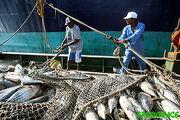 Pescadoresorgulloso