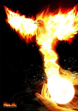 Phoenix-in-phoenix