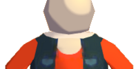 Roadie's Outfit