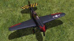 ZSK P-40E snp02