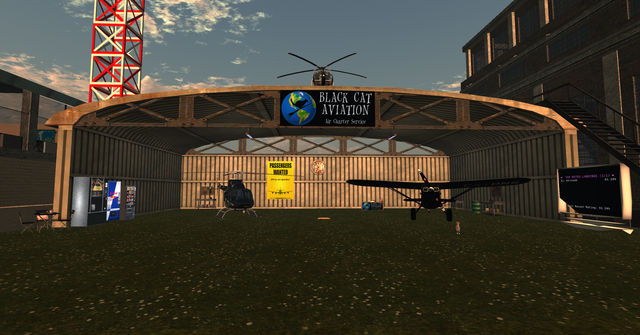 File:Black Cat Aviation in Fly By Night Airfield.png