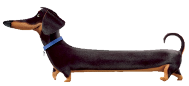 Weiner Dog From Secret Life Of Pets