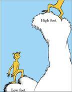 Foot6