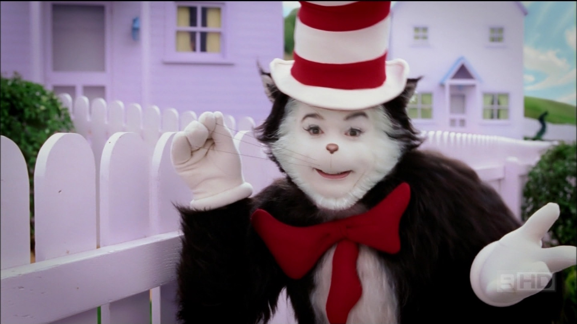 Image result for Cat and the hat pictures