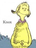 Mr. Knox