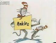 You can read about ankles