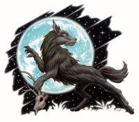Moon Dog.JPG