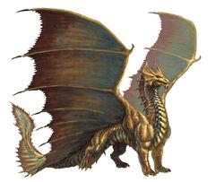 Dragon brass.jpeg