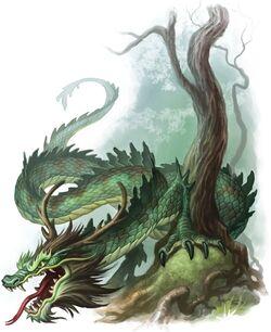 Jade dragon.jpg