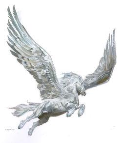 White pegasus.jpg