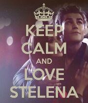 Keep Calm Stelena