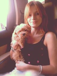 Bella-thorne-no-bangs-with-Kingston