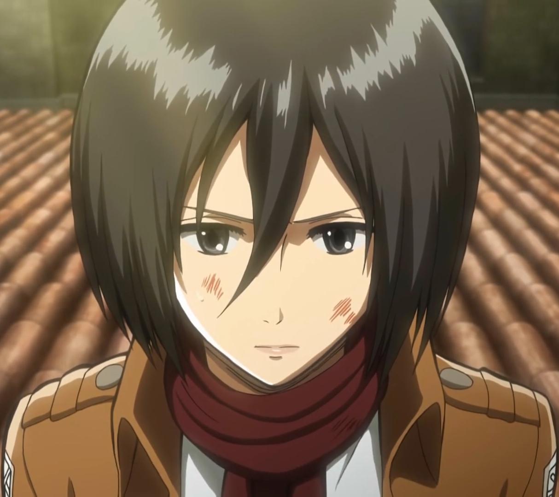 - Mikasa es su casa ...