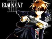 Black-Cat-black-cat-3786485-1024-76