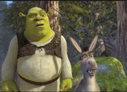 Shrek and donkey in shrek