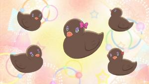 Black duckies