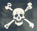 2004 Flag Pirate