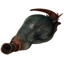 Giant leech
