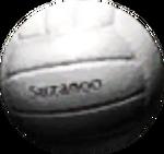 VolleyB