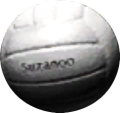 File:VolleyB.png