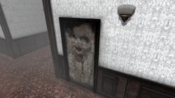 DoorFace
