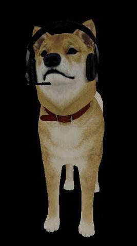 File:Sh2dog.jpg