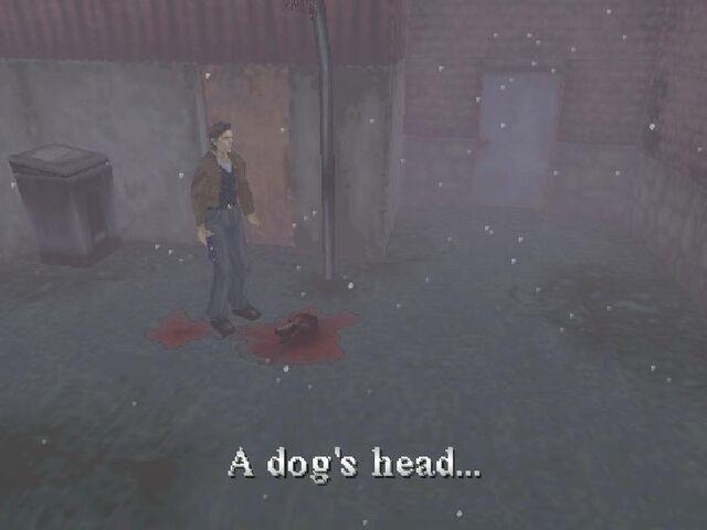 File:Doghead.jpg